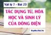 Tác dụng Từ, tác dụng Hóa học và tác dụng Sinh lý của dòng điện - Vật lý 7 bài 23